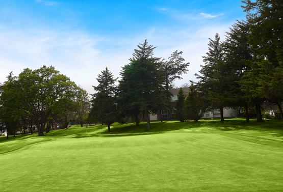Campo de Golf - Hoyo 2