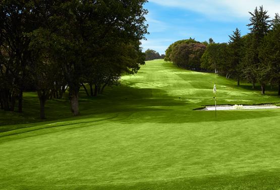 Campo de Golf - Hoyo 3