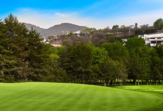 Campo de Golf - Hoyo 4