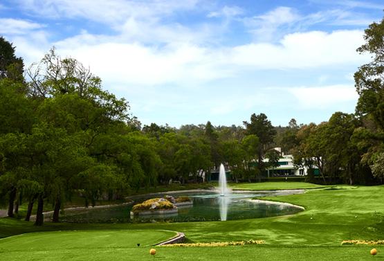Campo de Golf - Hoyo 8