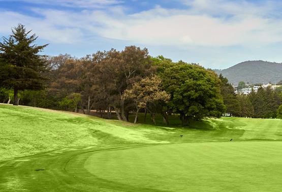 Campo de Golf - Hoyo 9