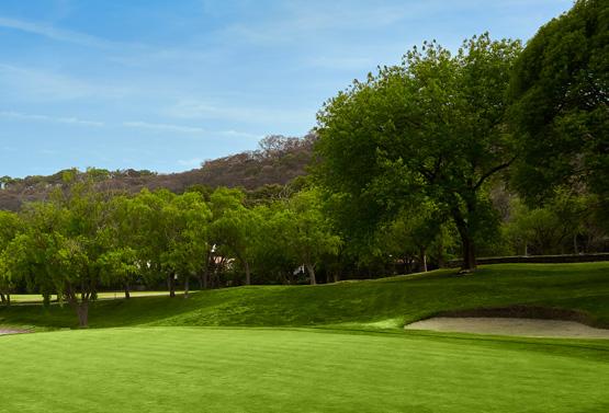 Campo de Golf - Hoyo 10