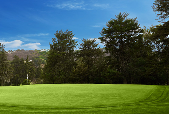 Campo de Golf - Hoyo 11