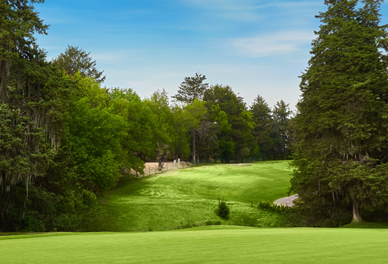 Campo de Golf - Hoyo 12
