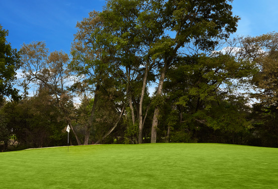 Campo de Golf - Hoyo 13