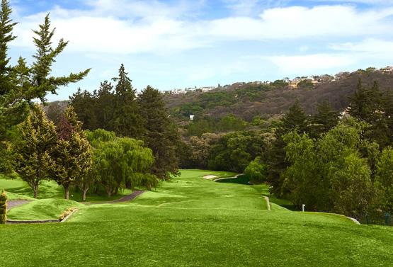 Campo de Golf - Hoyo 15