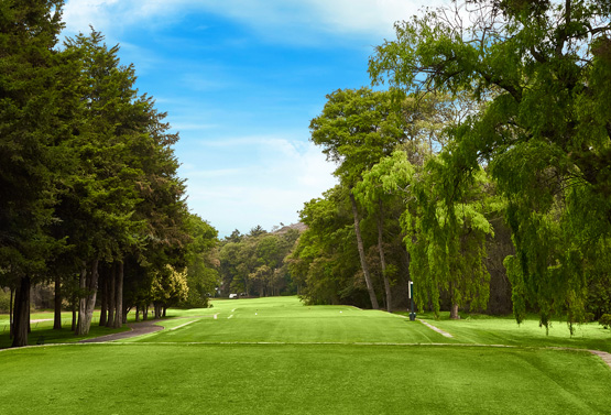 Campo de Golf - Hoyo 16