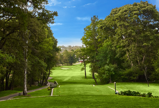 Campo de Golf - Hoyo 18