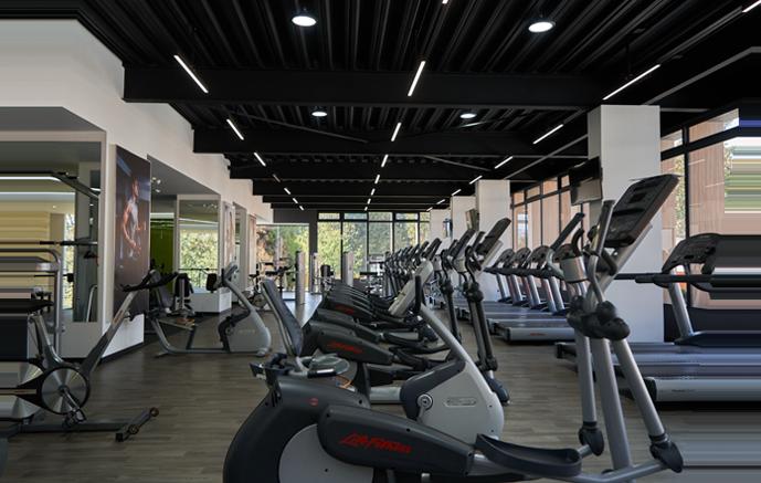 Zona del gimnasio con máquinas elípticas, treadmill y ciclo