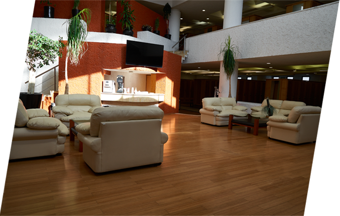 Zona de descanso con sillones y bar